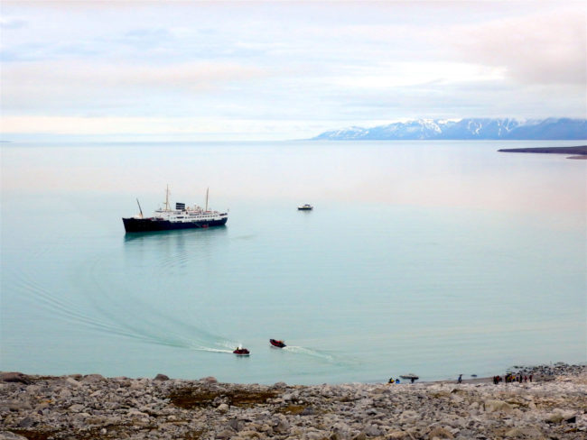 Svalbard Expeditions summer 2016